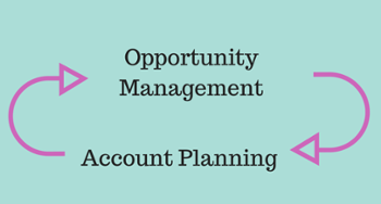 Opportunity Management - Account Planning